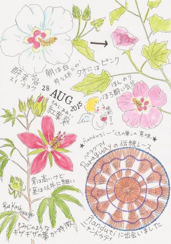 リエの絵日記